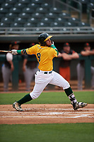 AZL Athletics Gold Rafael Rincones (8) at bat during an Arizona League game against the AZL Giants Black on July 12, 2019 at Hohokam Stadium in Mesa, Arizona. The AZL Giants Black defeated the AZL Athletics Gold 9-7. (Zachary Lucy/Four Seam Images)