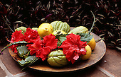 Brazil. Bowl with guavas, lemons, aloe ('babosa', Aloes sp.) and hibiscus flowers.