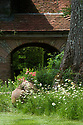 Geraniums in terracotta pots and ox-eye daisies at the foot of an ash tree, Vann House and Garden, Surrey, mid June.