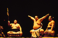 Sumo wrestlers in Hawaii