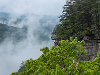 New River Gorge National Park, West Virginia.  View of New River Gorge Bridge through the Mist on a Rainy Day from the Endless Wall Trail.