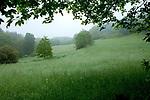 Europa, DEU, Deutschland, Saarland, Noerdliches Saarland, Typische Landschaft, Regen, Regenwetter, Dunst, Nach dem durchzug einer Gewitterfront, Natur, Umwelt, Landschaft, Jahreszeiten, Stimmungen, Landschaftsfotografie, Landschaften, Landschaftsphoto, Landschaftsphotographie, Wetter, Wetterelemente, Wetterlage, Wetterkunde, Witterung, Witterungsbedingungen, Wettererscheinungen, Meteorologie, Wettervorhersage, <br /> <br /> [Fuer die Nutzung gelten die jeweils gueltigen Allgemeinen Liefer-und Geschaeftsbedingungen. Nutzung nur gegen Verwendungsmeldung und Nachweis. Download der AGB unter http://www.image-box.com oder werden auf Anfrage zugesendet. Freigabe ist vorher erforderlich. Jede Nutzung des Fotos ist honorarpflichtig gemaess derzeit gueltiger MFM Liste - Kontakt, Uwe Schmid-Fotografie, Duisburg, Tel. (+49).2065.677997, ..archiv@image-box.com, www.image-box.com]