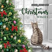 Sandra, CHRISTMAS ANIMALS, WEIHNACHTEN TIERE, NAVIDAD ANIMALES, paintings+++++,GBSSXM1D8X8,#xa#