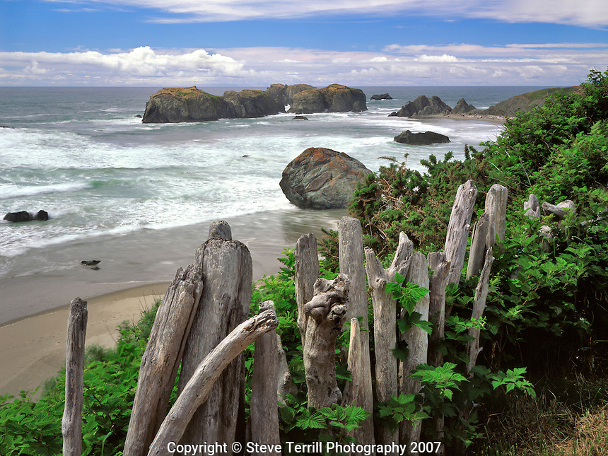Driftwood fence overlooks Bandon Beach, Oregon Coast