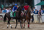 August 07, 2021: Maxfield #5, ridden by Jose Ortiz in the post parade before the Grade 1 Whitney Stakes at Saratoga Race Course in Saratoga Springs, N.Y. on August 7, 2021. Robert Simmons/Eclipse Sportswire/CSM