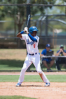 AZL Dodgers left fielder Frank Sanchez (8) at bat during an Arizona League game against the AZL Padres 2 at Camelback Ranch on July 4, 2018 in Glendale, Arizona. The AZL Dodgers defeated the AZL Padres 2 9-8. (Zachary Lucy/Four Seam Images)