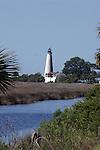 St Marks Wildlife Preserve, Florida