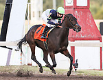 September 26th 2021: Lady Mystify trained by Peter Eurton wins the Remington Park Oaks with rider Flavien Prat up for owners Exline-Border Racing LLC, SAF Racing and Richard Hausman