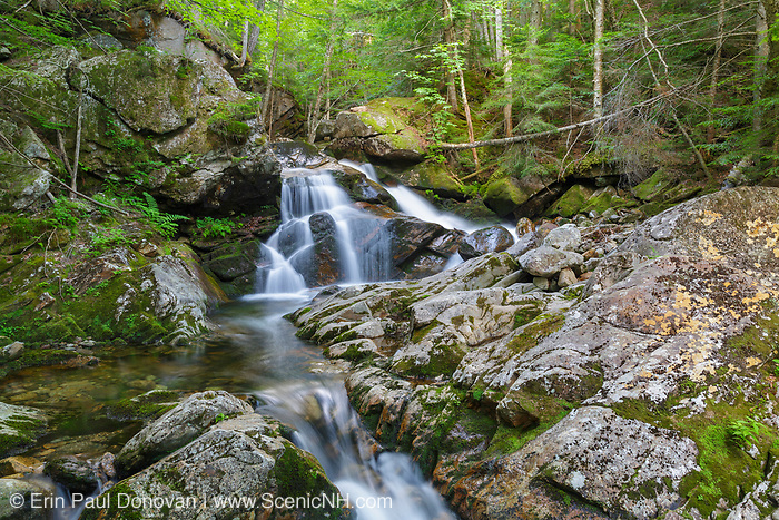 Cascade on Cold Brook in Randolph, New Hampshire during the summer months. This is the top section of a series of cascades that is in the area where the forgotten Tertia Cascade is thought to be. It is unknown what cascade is the named cascade.