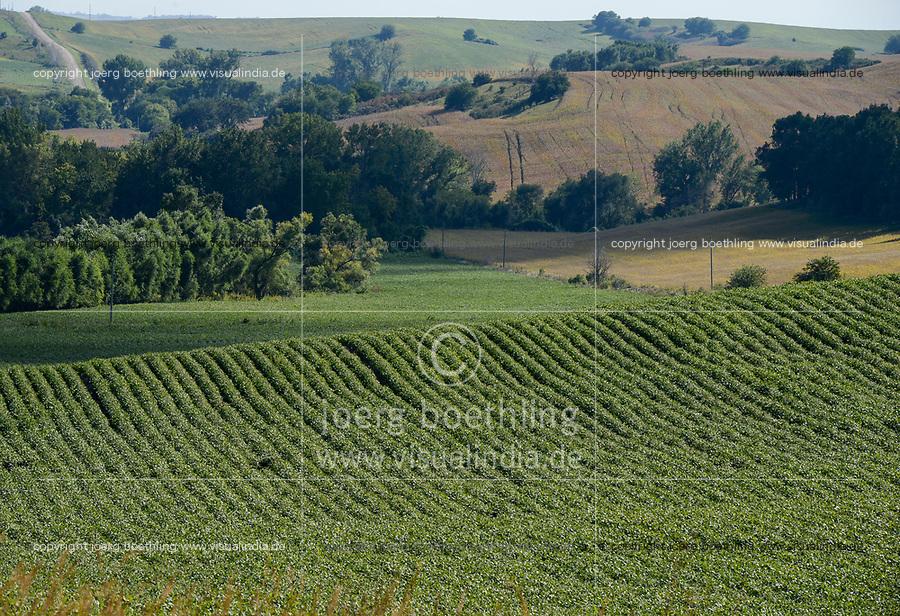 USA, Nebraska, Omaha Reservation, soybean farming
