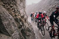 Thomas de Gendt (BEL/Lotto-Soudal) in the breakaway group<br /> <br /> 76th Paris-Nice 2018<br /> Stage 7: Nice > Valdeblore La Colmiane (175km)