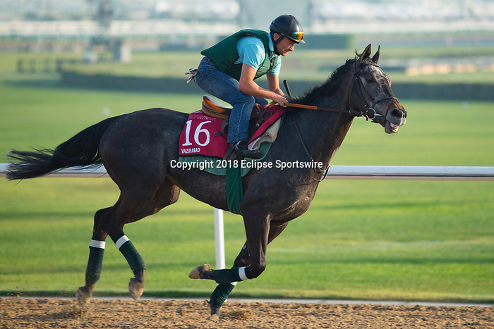 DUBAI,UNITED ARAB EMIRATES-MARCH 29: Vazirabad,trained by Alain de Royer Dupre,exercises in preparation for the Dubai Gold Cup at Meydan Racecourse on March 29,2018 in Dubai,United Arab Emirates (Photo by Kaz Ishida/Eclipse Sportswire/Getty Images)