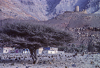 Bukha, Oman.  Al-Qala Fort, overlooking town of Bukha.  1985, before restoration.