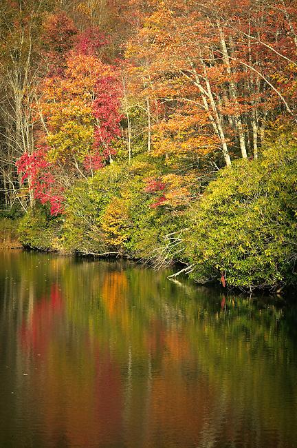 Autumn colors along Trout Lake