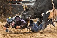 RAMRodeo'19 0512 rodeo funday