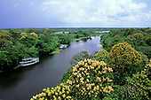 Amazonas State, Brazil. Tributary of the Rio Negro with moored riverboats.