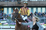 NEW YORK, NY - APRIL 08: Irish War Cry #8, ridden by Rajiv Maragh, wins the Wood Memorial Stakes on at Aqueduct Racetrack on April 8, 2017 in the Ozone Park,  New York. (Photo by Sue Kawczynski/Eclipse Sportswire/Getty Images)