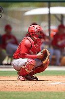 GCL Cardinals catcher Irving Wilson (4) during the second game of a doubleheader against the GCL Marlins on August 13, 2016 at Roger Dean Complex in Jupiter, Florida.  GCL Cardinals defeated GCL Marlins 2-0.  (Mike Janes/Four Seam Images)