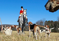 Huntsman Tony Gammell leads the fox hunt after the 82nd annual Blessing of the Hounds service Thanksgiving Day at the Grace Episcopal Church in Cismont, Va.  Photo/The Daily Progress/Andrew Shurtleff
