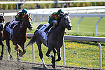 Paddy O'Prado with Kent Desormeaux leads the field at the top of the stretch in The Toyota Bluegrass Stakes at Keeneland Race Course. 04.10.2010