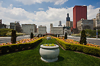 Spring planting of Tulips along Chicago's Congress Parkway