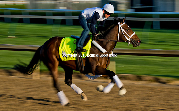 LOUISVILLE, KY - MAY 01: Firenze Fire, trained by Jason Servis, exercises in preparation for the Kentucky Derby at Churchill Downs on May 1, 2018 in Louisville, Kentucky. (Photo by Scott Serio/Eclipse Sportswire/Getty Images)