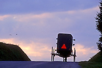 AJ1123, Amish, buggy, Pennsylvania, Lancaster County, Amish covered buggy traveling up the hill on a country road at dusk in Pennsylvania Dutch Country.