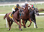 September 1, 2014: #4 Quality Lass, John Bisono up, wins the Turf Amazon Handicap at Parx Racing in Bensalem, PA. Trainer is Guadalupe Preciado; owner is West Point Thoroughbreds. ©Joan Fairman Kanes/ESW/CSM