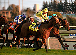 """October 14, 2018: #4 Sheikha Renika surges ahead at the wire with Andrea Atzeni """"up"""" to win the E.P. Taylor G1 for fillies and mares at Woodbine Race Track in Toronto, Canada. Dan Heary/Eclipsesportswire/CSM"""