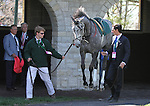 April 11, 2015: Filimbi in the paddock before running in the Grade 1 Jenny Wiley $300,000 with trainer Bill Mott looking on.   Candice Chavez/ESW/CSM