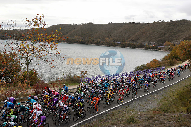 The peloton during Stage 7 of the Vuelta Espana 2020 running 159.7km from Vitoria-Gasteiz to Villanueva de Valdegovia, Spain. 27th October 2020.  <br /> Picture: Luis Angel Gomez/PhotoSportGomez | Cyclefile<br /> <br /> All photos usage must carry mandatory copyright credit (© Cyclefile | Luis Angel Gomez/PhotoSportGomez)