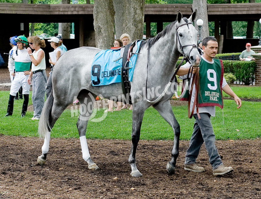Ansong before The Rooney Memorial Stakes at Delaware Park on 6/18/11