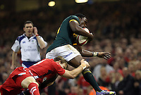 Pictured L-R: Liam Williams of Wales is tackling Teboho Mohoje of South Africa Saturday 29 November 2014<br />