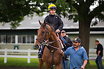 June 4, 2015: Keen Ice heads to the track to train in preparation for the Belmont Stakes at Belmont Park in Elmont, York. Zoe Metz/ESW/CSM
