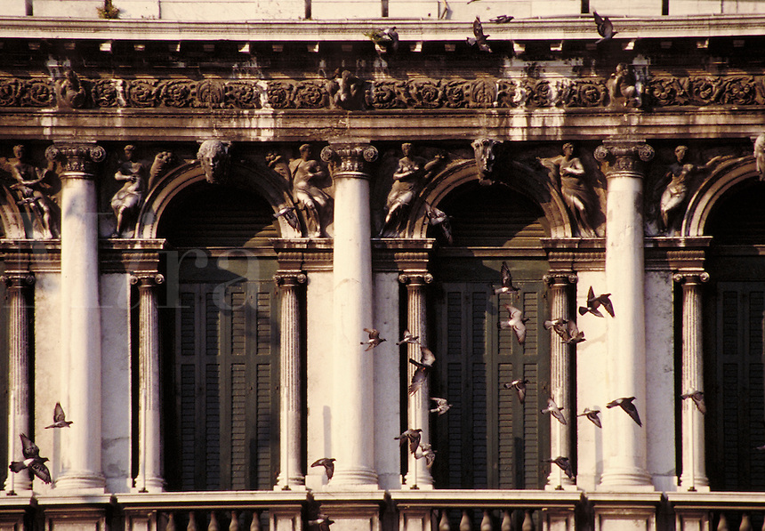 The pigeons of Piazza San Marco take flight accross an ornate, detailed building. architecture, inonic columns, frieze, relief, relievio, sculpture, architecture. Venice, Italy.