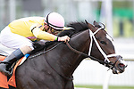 May 14, 2021 : Scenes from an undercard race on Black-Eyed Susan Day at Pimlico Race Track in Baltimore, Maryland on May 14, 2021. Wendy Wooley/Eclipse Sportswire/CSM