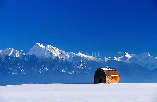 Old barn and Mission Mountains in winter  near Ronan, Montana