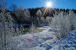 Idaho, North, Bonner County, Sandpoint. Grouse creek flows through the Kaniksu National Forest from the Cabinet Mountains in winter. (Lens Flare)