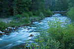 Idaho, South Central, Sun Valley. The North Fork of the Big Wood River flows from the Boulder Mountains in Summer.