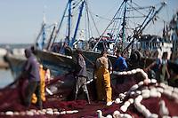 Afrique/Afrique du Nord/Maroc/Essaouira: Au port retour des bateaux de pêche