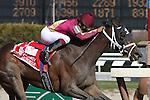 2011 04 09: Hot Summer and Luis Saez win the  Grade 3 at 1 mile at Aqueduct Racetrack. Trainer David Fawkes. Owner Harold L. Queen