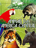 Alfredo, CUTE ANIMALS, books, paintings, BRTOLP20557,#AC# Kinderbücher, niños, libros, illustrations, pinturas