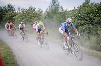 Niki Terpstra (NED/Total - Direct Energie)<br /> <br /> Dwars door het Hageland 2019 (1.1)<br /> 1 day race from Aarschot to Diest (BEL/204km)<br /> <br /> ©kramon