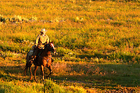 Woman on horseback riding through pasture, Triangle X Ranch, Grand Teton National Park, Teton County, Wyoming, USA