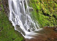 Cabin Creek Falls with moss covered rocks. Columbia River Gorge National Scenic Area, Oregon