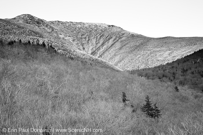 Lafayette Brook Scenic Area in the White Mountains, New Hampshire USA. Old growth forest can be found in this valley.