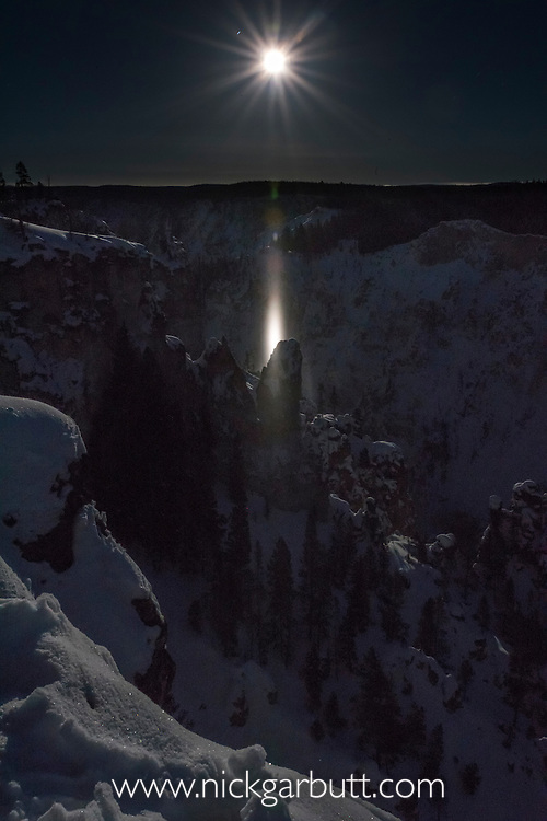 A moon pillar or moon beam at full moon over the Grand Canyon of the Yellowstone, Yelllowstone National Park, Wyoming, USA. January. Created by reflections off ice crystals hanging in the air.