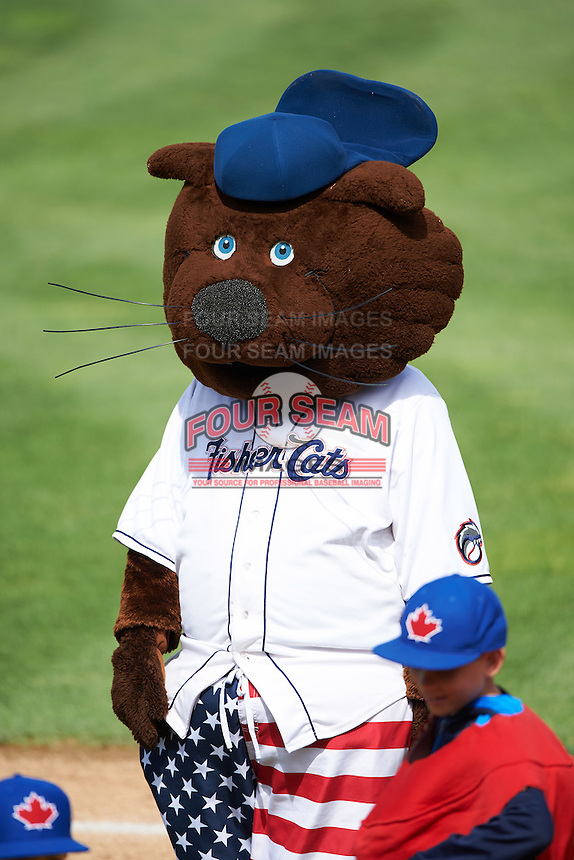 New Hampshire Fisher Cats mascot Fungo during a game against the Reading Fightin Phils on May 30, 2016 at Northeast Delta Dental Stadium in Manchester, New Hampshire.  New Hampshire defeated Reading 9-1.  (Mike Janes/Four Seam Images)