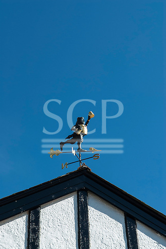 Three Bridges, Devon, England. Weather vane frog with tankard.