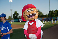 Modesto Nuts mascot Wally the Walnut interacts with fans before a California League game against the Lake Elsinore Storm at John Thurman Field on May 11, 2018 in Modesto, California. Modesto defeated Lake Elsinore 3-1. (Zachary Lucy/Four Seam Images)
